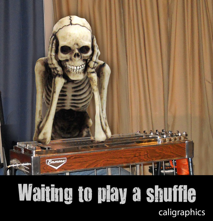 Steel guitar shuffles